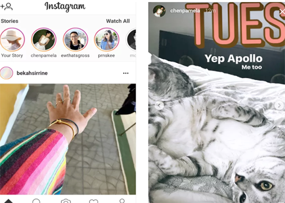 You can now view Instagram Stories on the web