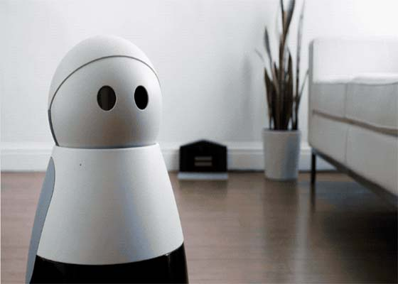 Home robot Kuri can now recognize pets, see and stream in HD